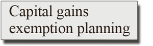 Capital Gains Exemption Planning